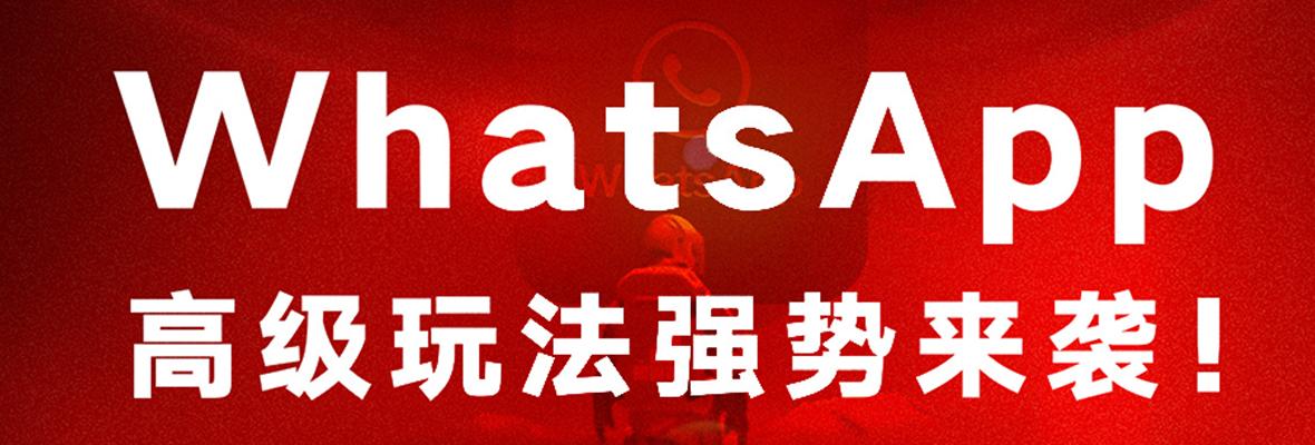 黑格增长 | WhatsApp全套高级获客功能强势来袭,仅此一家!