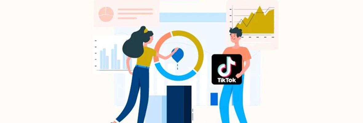 社交引流 TikTok+外贸独立站的最新组合~