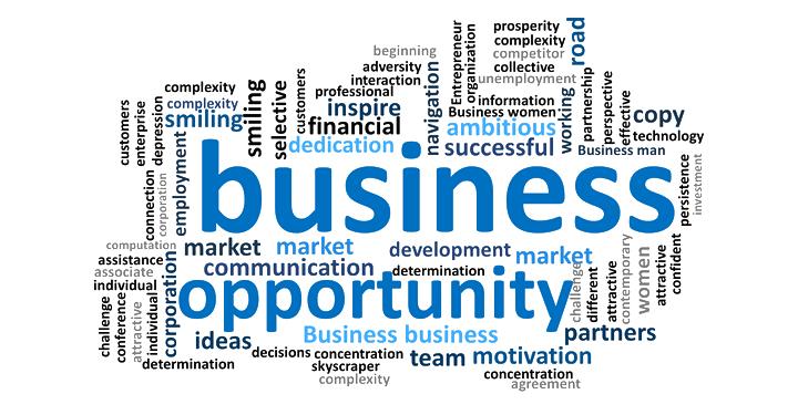 business-opportunity-slide9